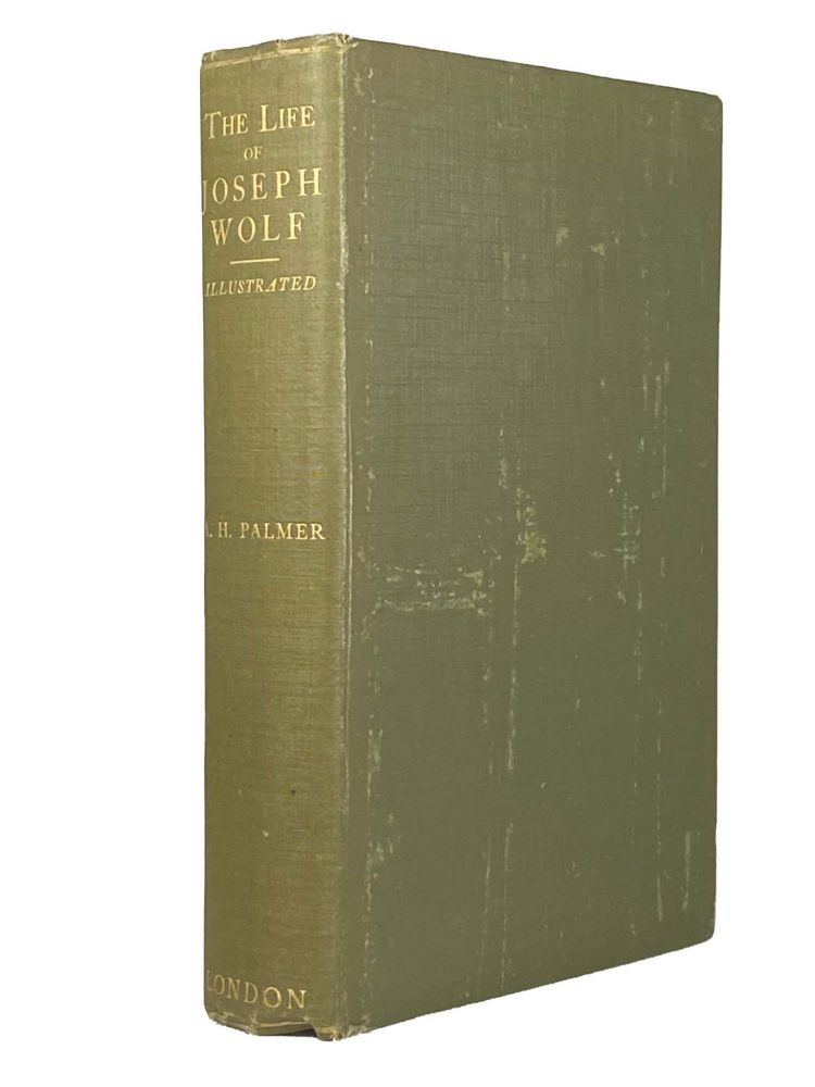 The Life Of Joseph Wolf Animal Painter ; Illustrated. A. H. PALMER.