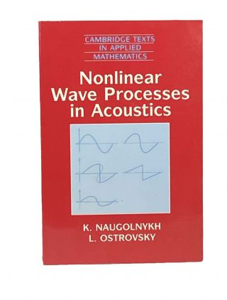Nonlinear Wave Processes in Acoustics