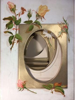 Unused 19th century Photograph Album with floral decorated leaves.
